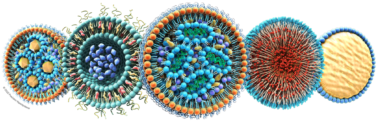 Nanoparticle, Liposome, & Lipid Nanoparticle